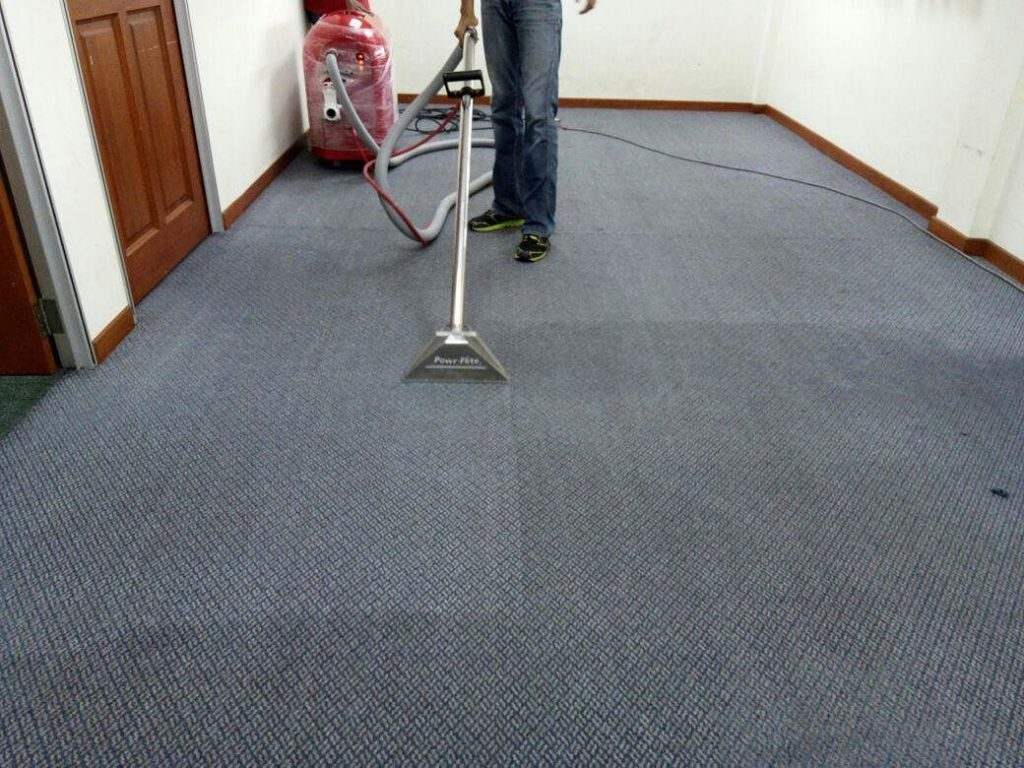 Why You Should Get the Pros in to Clean Your Carpet